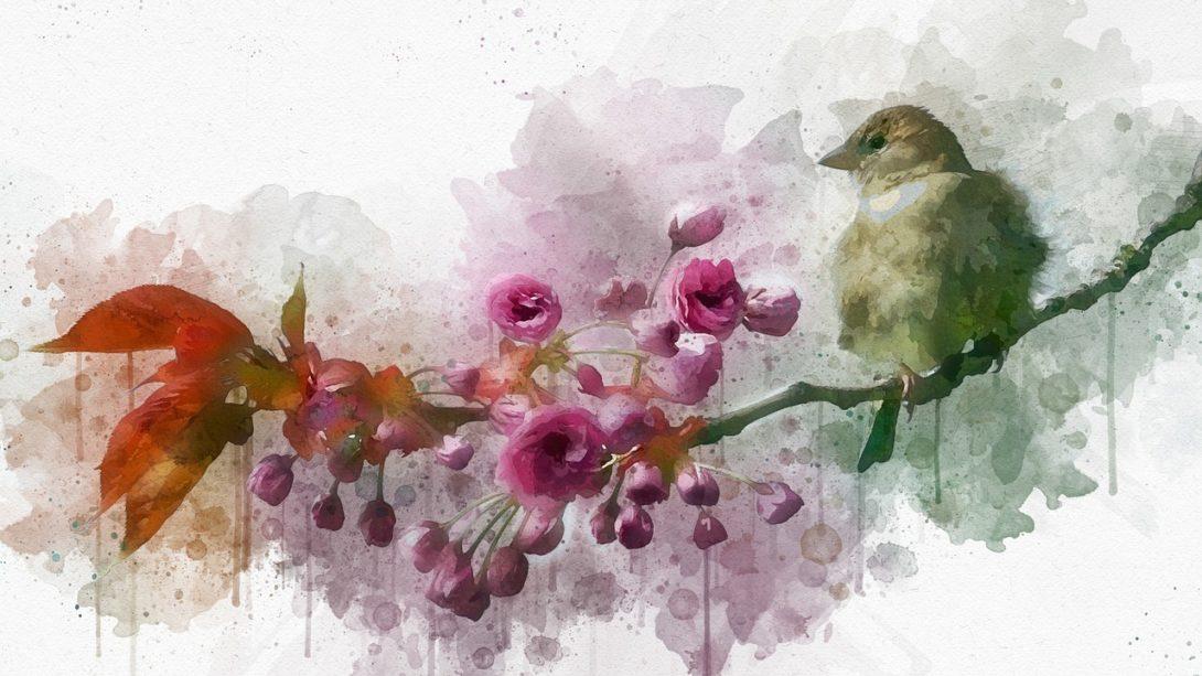 bird, branch, sit